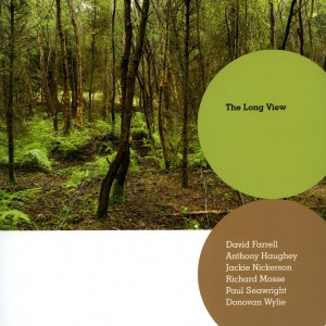 The Long view- David farrell, Anthony Haughey, Jackie Nickerson, Richard Mosse, Paul Seawright, Donovan wylie, Gallery of Photography Photobooks site