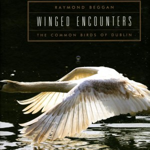 Winged encounters- Raymond Beggan, GOP Photobooks site